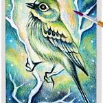 Bird 10 ~ EvitaWorks
