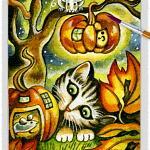 Cat 12 ~ EvitaWorks