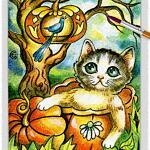 Cat 16 ~ EvitaWorks